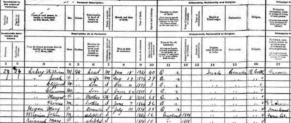 William Lahey household, 1901 Census of Canada, Ontario, Carleton, March township, family no. 27, p. 4, lines 1-9.